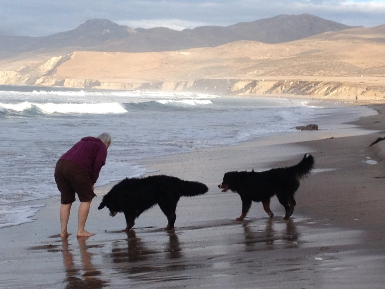 LuLu and Tuks First Time in the Pacific