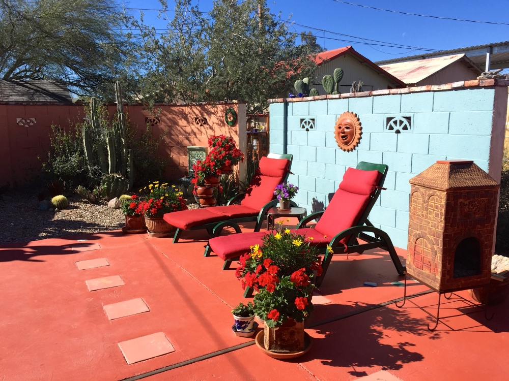 Neighbors Bill and Nancy's Colorful Backyard