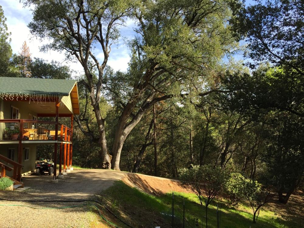 Ed and Patricia's Beautiful Home Near Mariposa