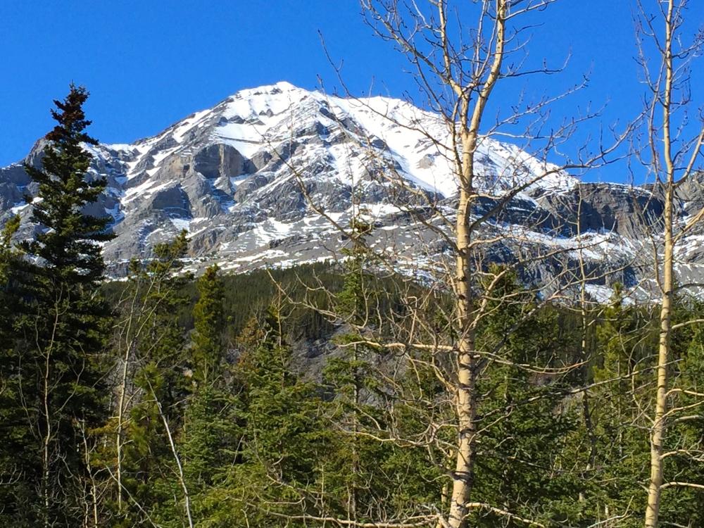 Near Stone Mtn Provincial Park BC