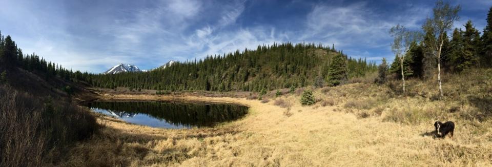 Zen Lake