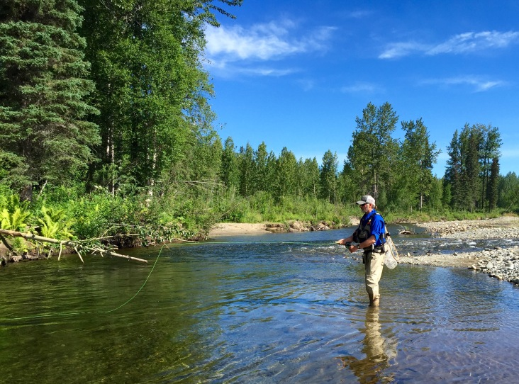 Brad Ebel Fly Fishes For Rainbow Trout