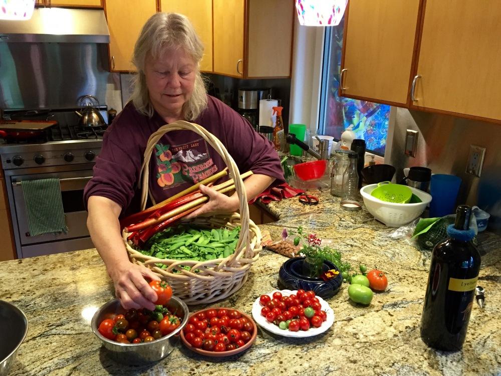 Denise Harvests The Final Crop