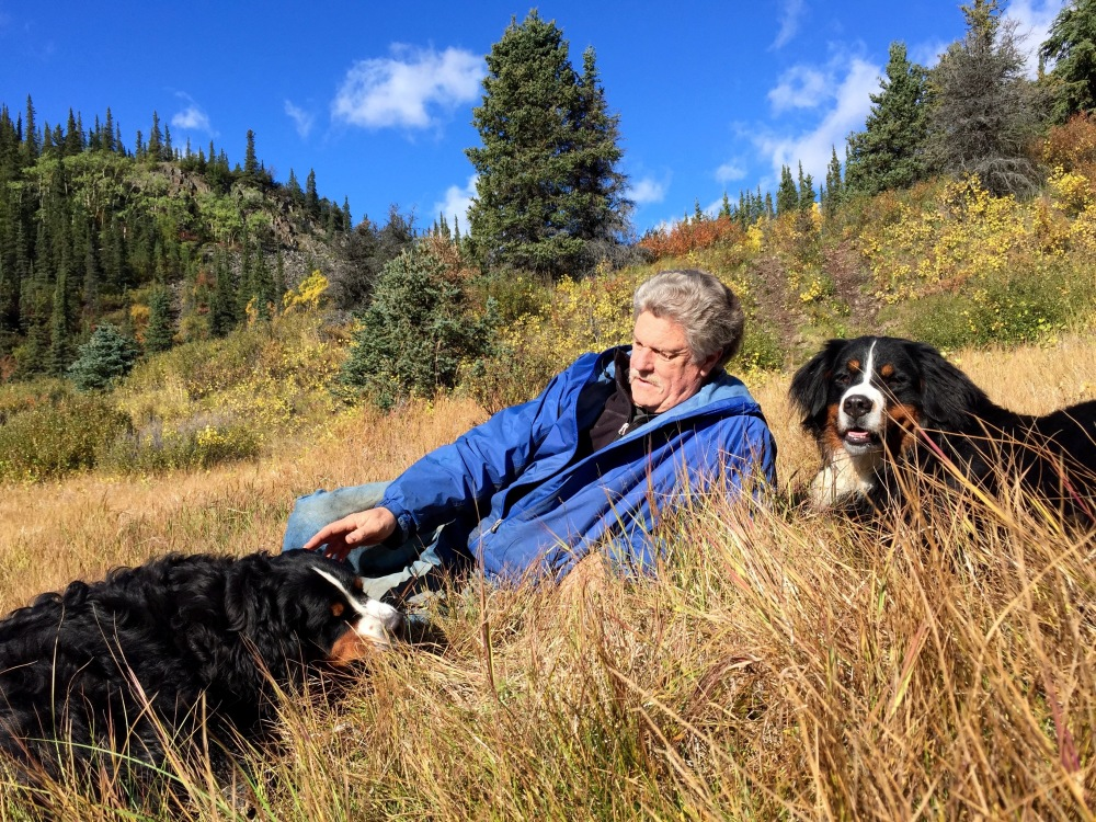 Tim And The Pups Roll In The Fall Grass