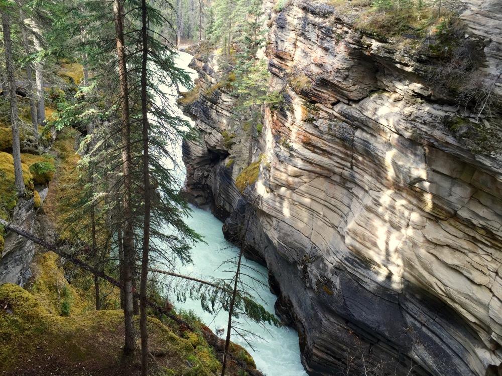 Athabaska Falls 2015