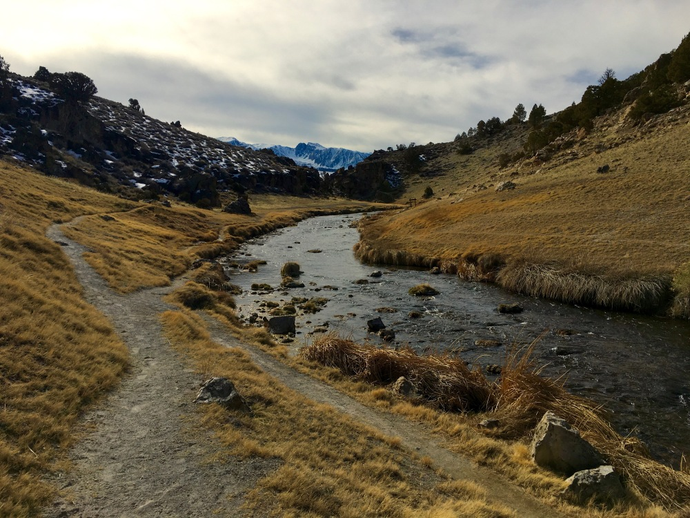 Hot Creek Geothermal Zone