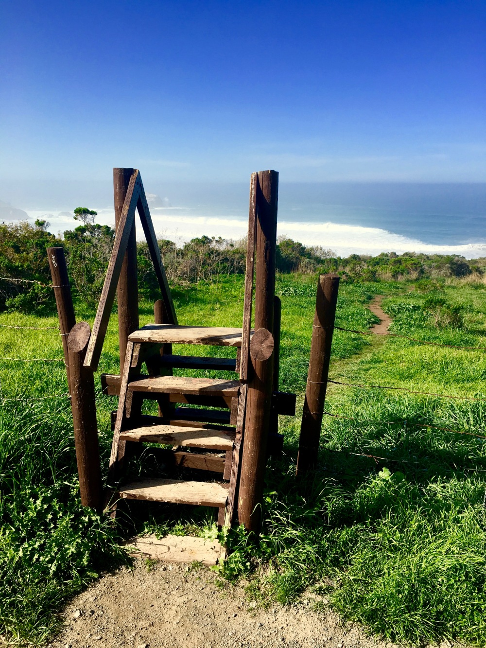 Stairway to the coast