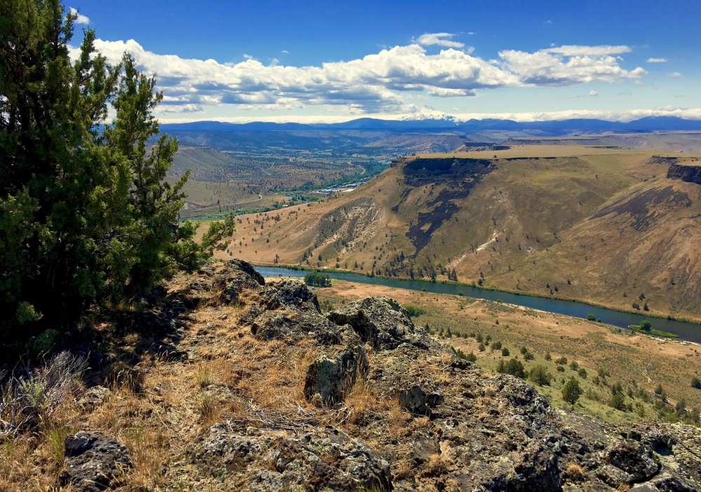 High Above The Deschutes River Near Warm Springs