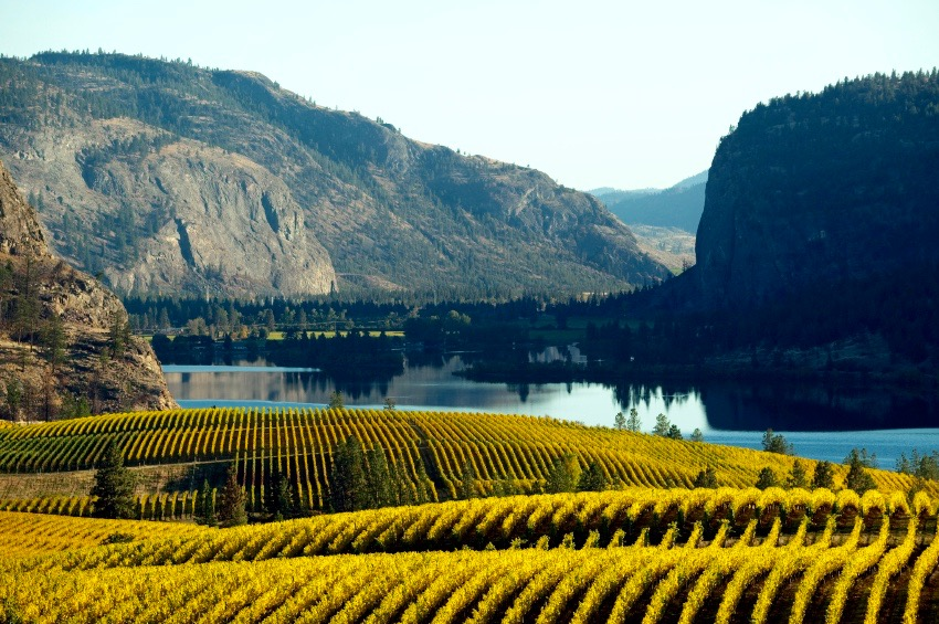 The Okanogan Valley