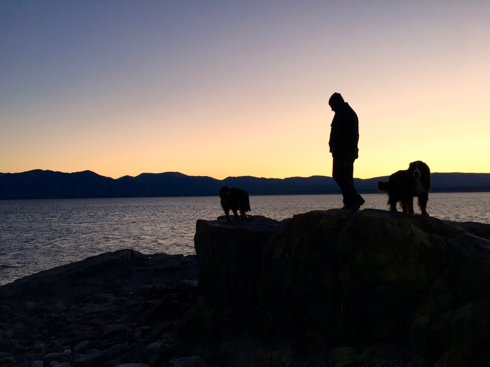 Tim And Pups Enjoy The Evening Light On Kluane Lake