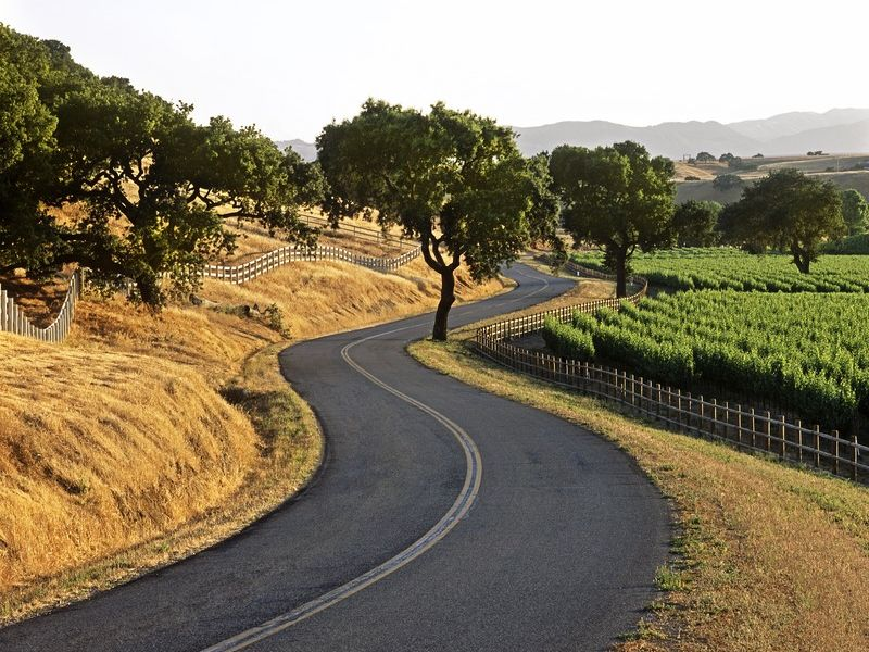 A Typical California Backroad